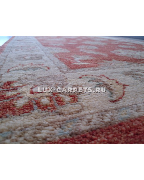 Ковер 0.97х1.59 Pakistan Zigler 155 kn S.P. 19460/304